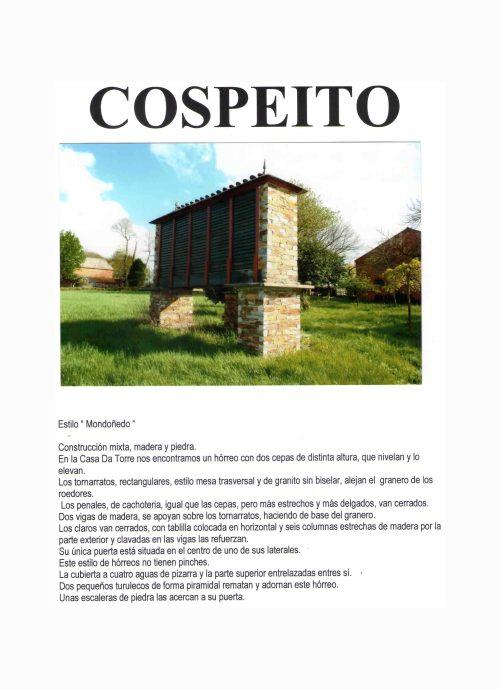 COSPEITO B